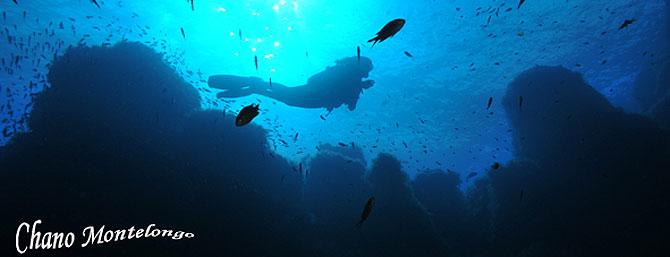 Inmersión en las Islas Bledes (Foto: Chano Montelongo)